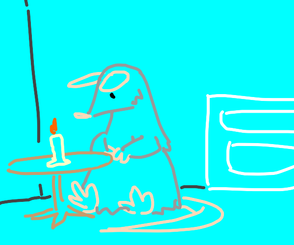 Rat home