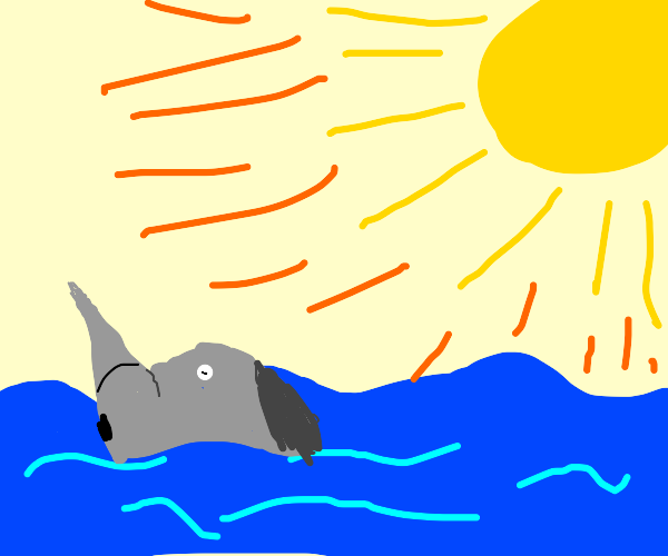 Rhino being a ice ice baby in the sea