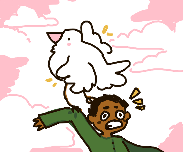 chicken picks up man + flies away with him