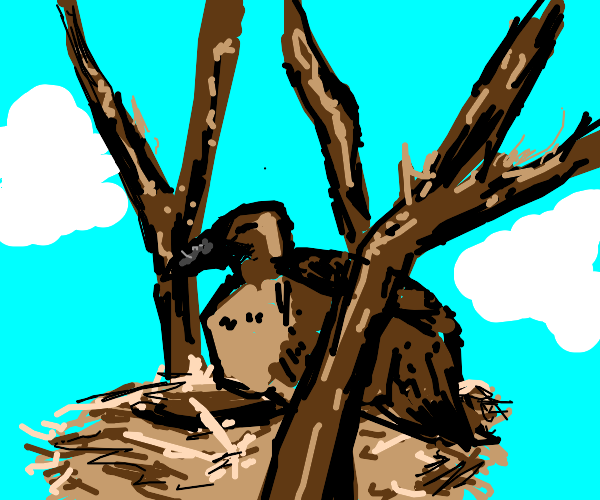 Vulture in Nest