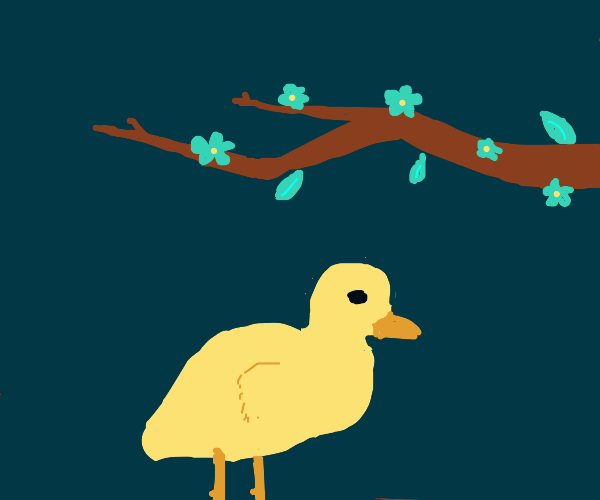 Duck underneath a branch of flowers