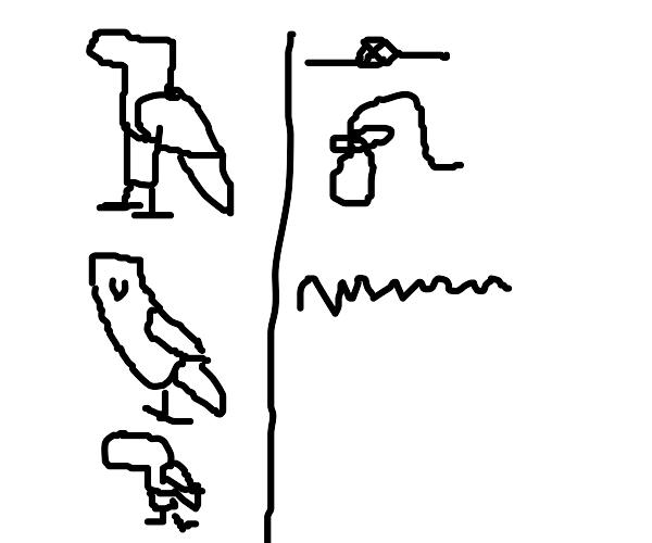 Egyptian Amazon
