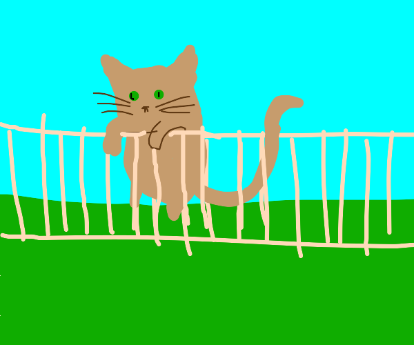 green brown cat hanging over fence