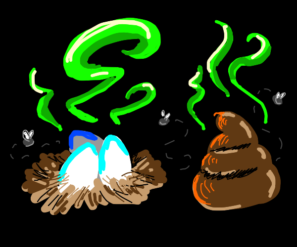 Stinky eggs and stinky poo