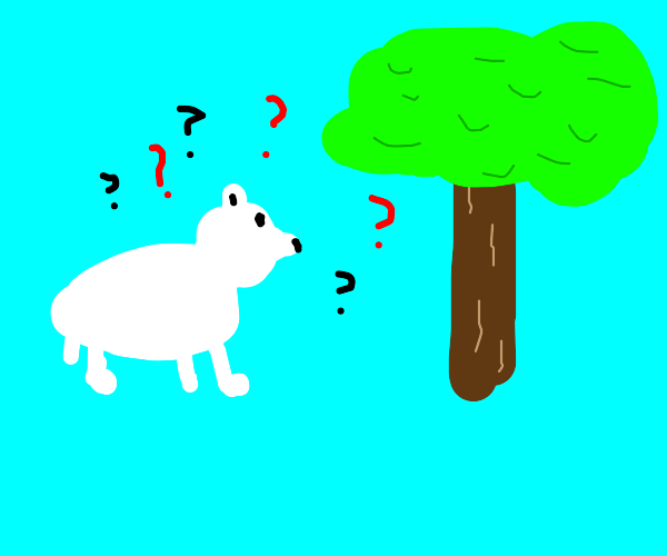 Polar Bear is confused by a tree