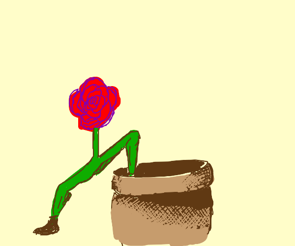 flower with leg get into pot