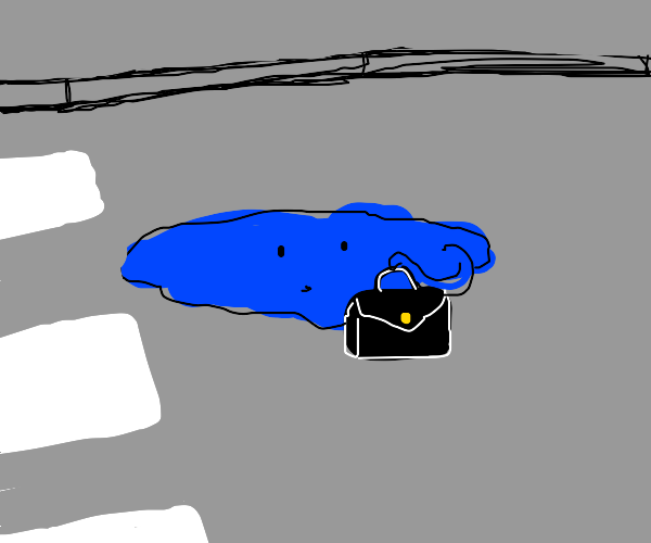 A puddle with a bag