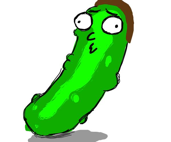 Pickle Rick but it's not Rick