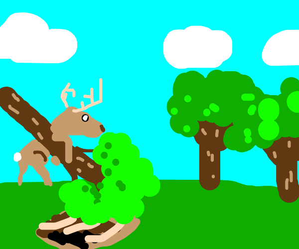 Deer digging with a Tree