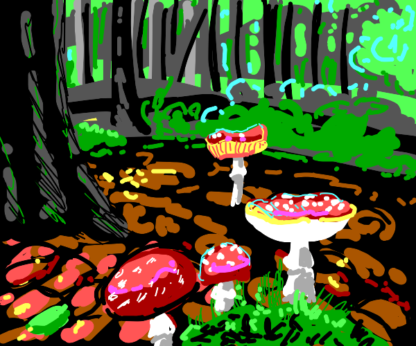 The Sublimity of the Fungal Woodlands