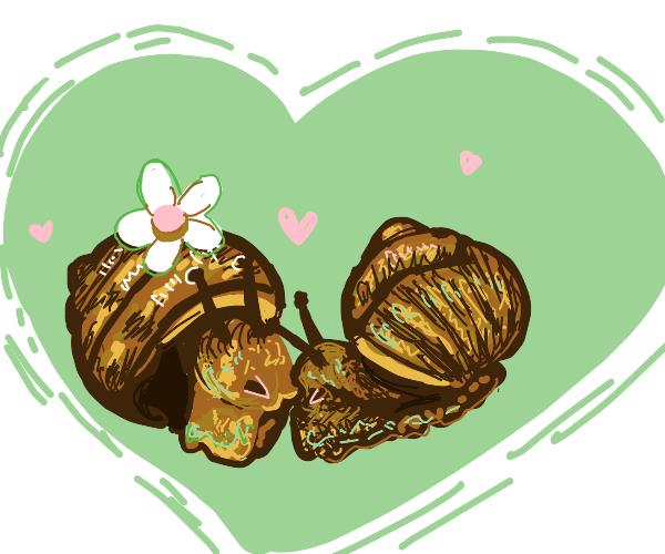 Snail Couple in Love