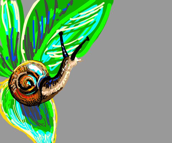 Adorable snail on a leaf :D