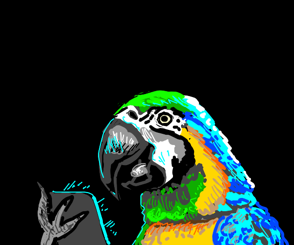 cool parot does human things