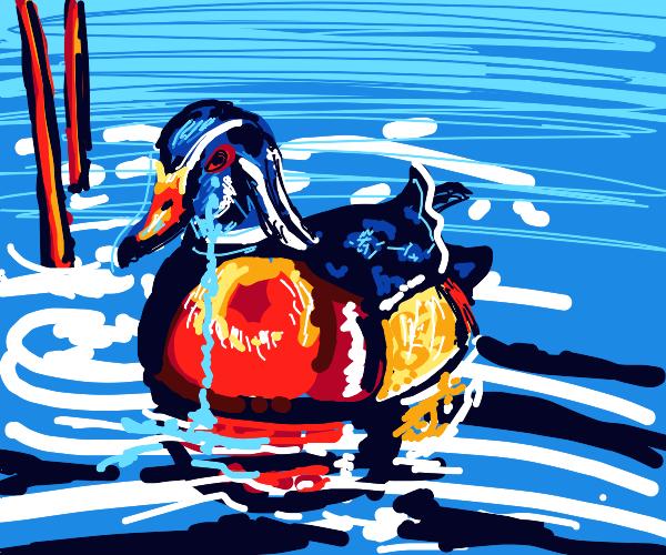 Poor duck cries him a river.