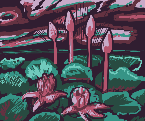 Mushrooms and plants
