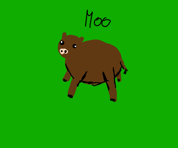Brown cow goes moo