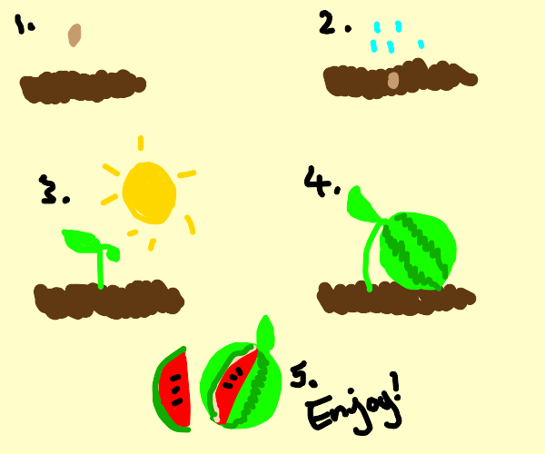 Steps to make a water melon