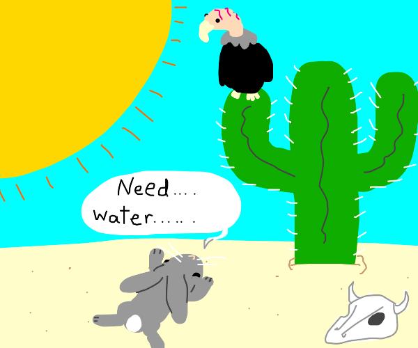 bunny tells bird she needs water