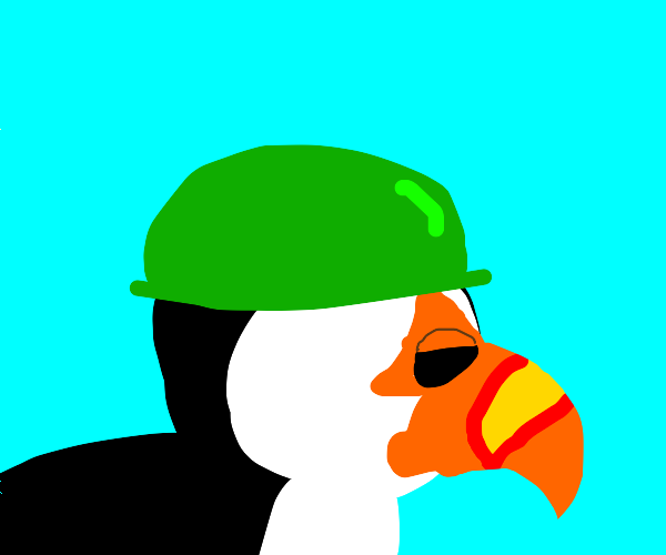 Puffin soldier