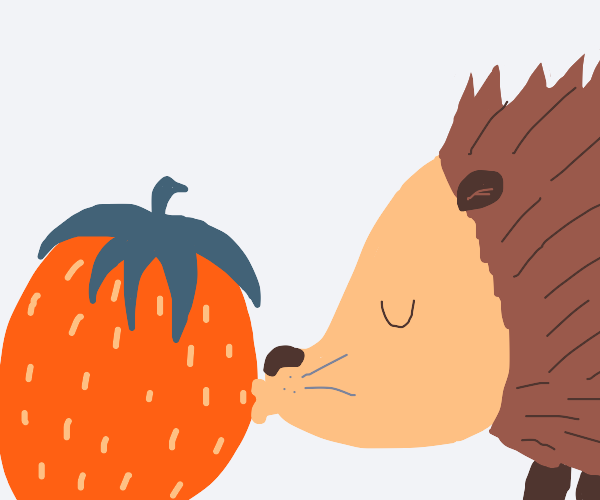 Hedgehog loves strawberry