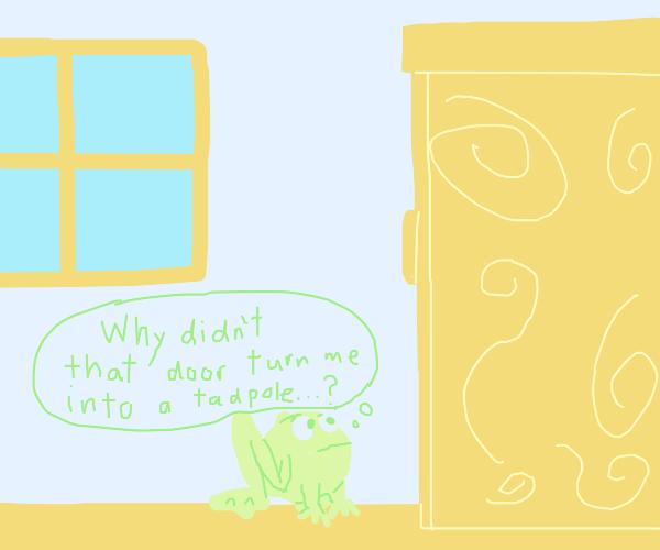 Frog looking at a wardrobe