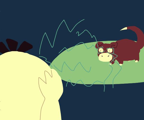 psyduck vs slowpoke
