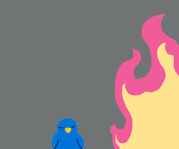 bird resting by pink fire