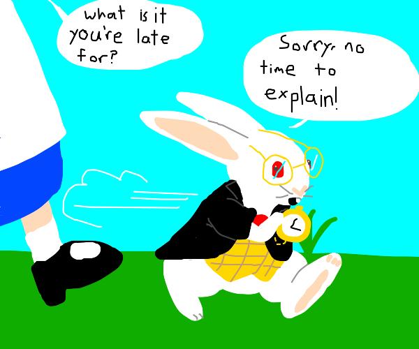 Bunny apologises to girl