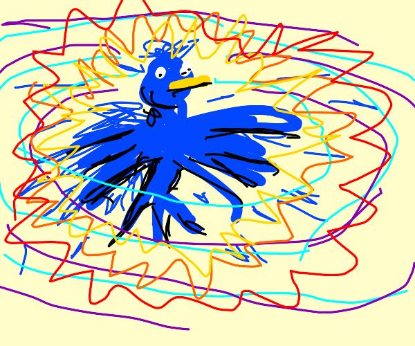 Bird explodes