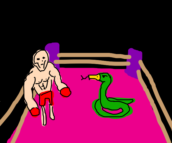 boxer vs snake with a duck bill