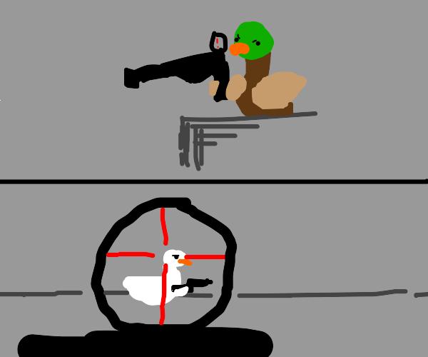 sniper duck lines up a shot