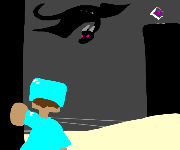 guy is defeating the ender dragon