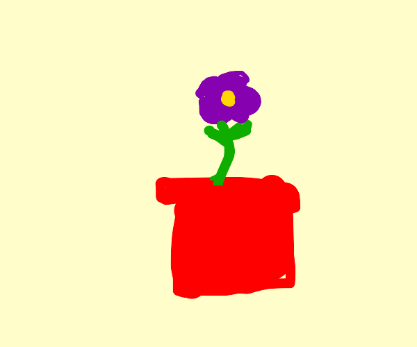 small purple flower in a red flower pot