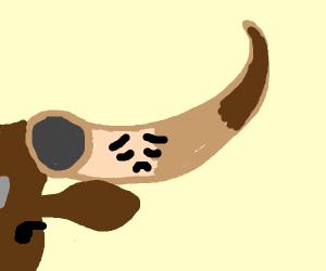 a horn is sad.