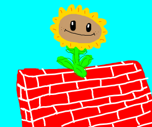 Plants vs zombies flower on a wall