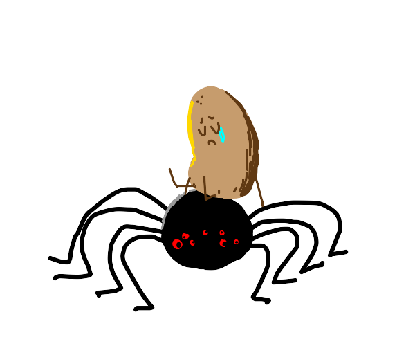 Sad potato rides on spider