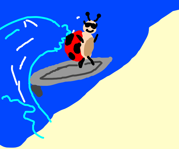 A Ladybug is ultra-cool professional surfer