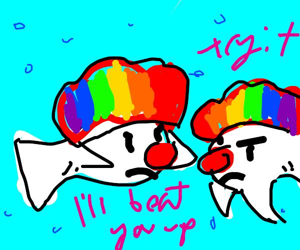 Clown fish fight