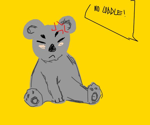 koala gets mad that you wont cuddle