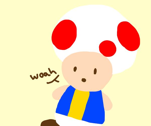 "Toad goes ""Woah"""