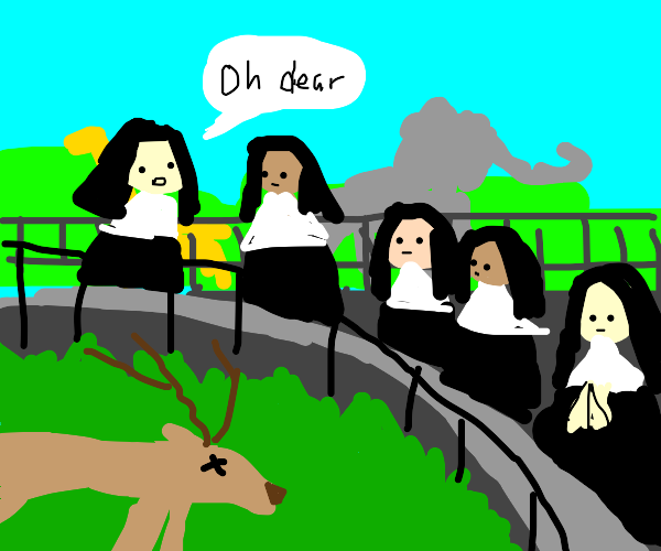 Nuns find dead deer in the zoo