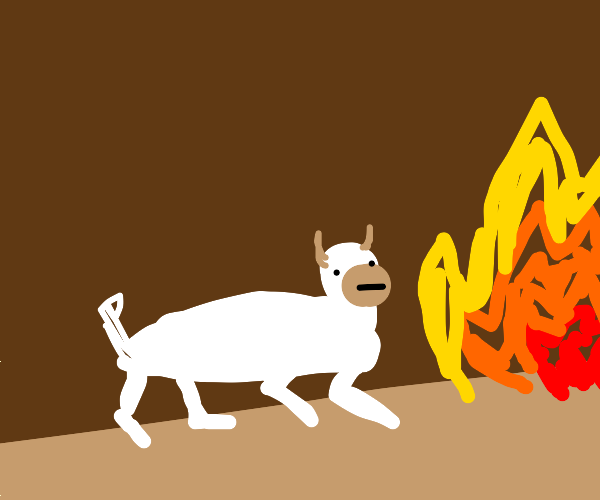 a goat running right in fire