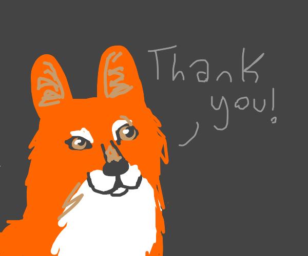 "Fox says ""thank you"""