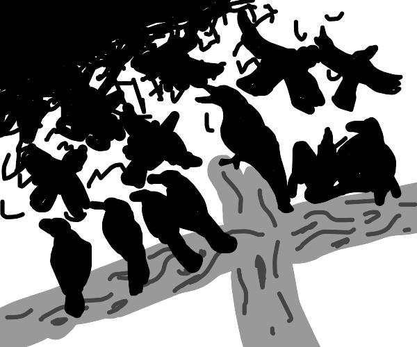 the crow-pocalypse