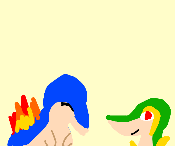 Chyndaquil and Snivy Pokemon