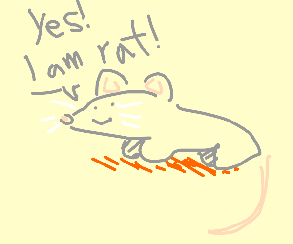 Rat assures itself of its identity