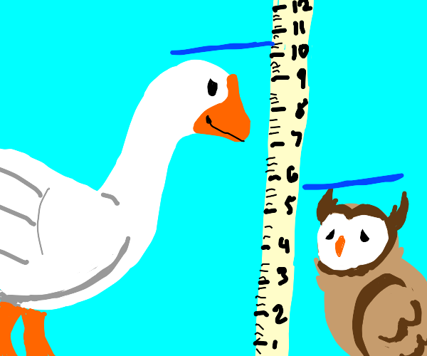 Goose is taller than owl
