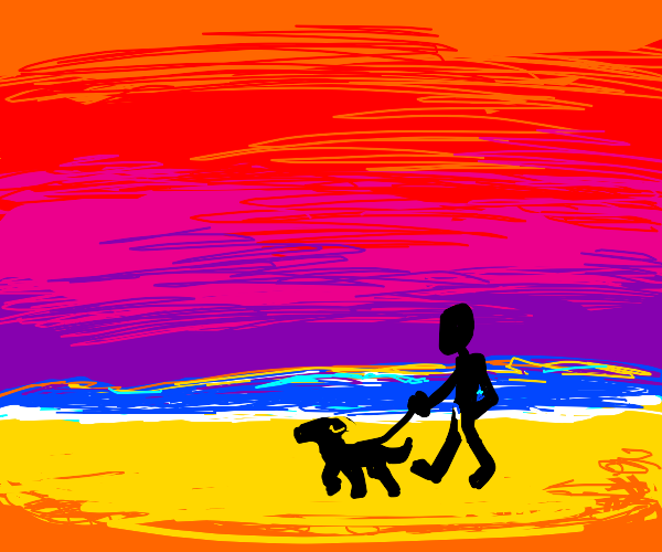 Walking a dog during sunset at the beach