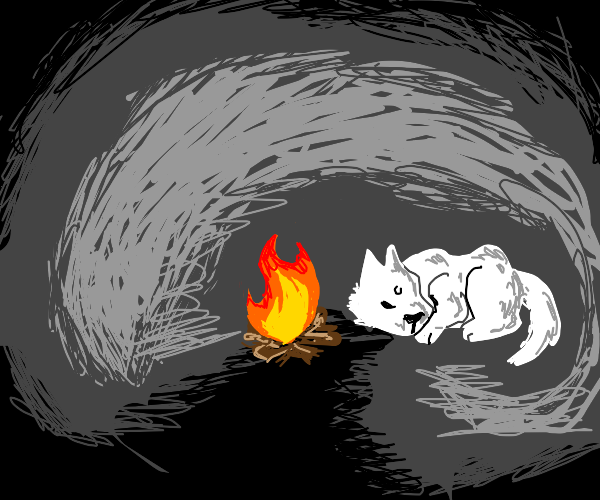 Wolf resting in cave next to a fire