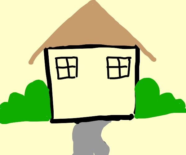 House with no door